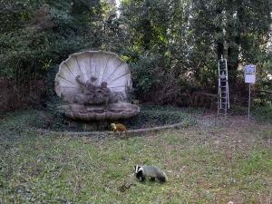 monumento memoria manicomio rovigo e fauna