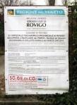 il parco al manicomio di Rovigo n.1